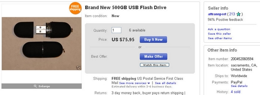 attransport-eBay Brains Missing 500 USB Flash Memory Thumb Stick